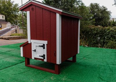Mini-Chicken-Coop-(16)